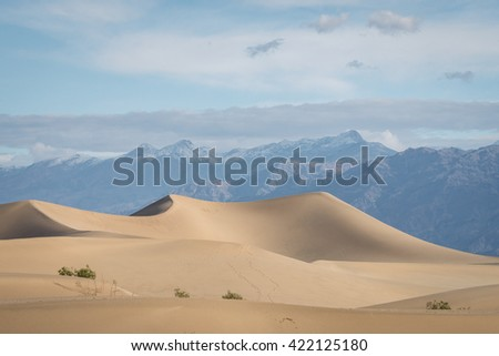 The stunning backdrop of the dramatic snow-covered mountains behind the surreal mesquite sand dunes in Death Valley National Park