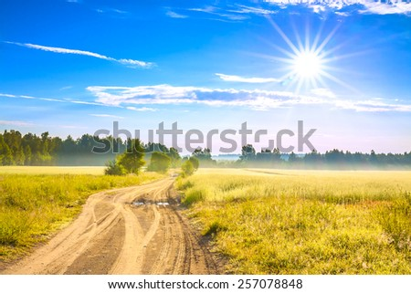 the summer rural landscape with a field, sunrise and  road - stock photo