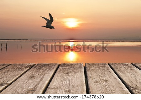 the sun and the gable - stock photo