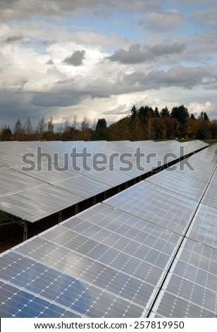 The sun hits panels on a green solar energy farm - stock photo