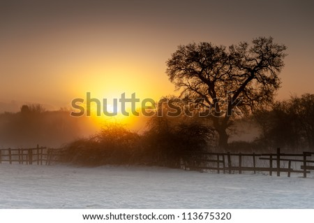 The sun rises above misty woodland and backlights the closer trees and bushes, silhouetting them. Snow lies in the foreground and the sky is clear. Horizontal format with space for copy if required. - stock photo