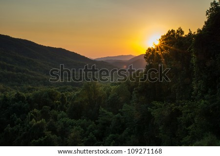 The sun's rays burst through the trees as it rises over the smoky mountains.
