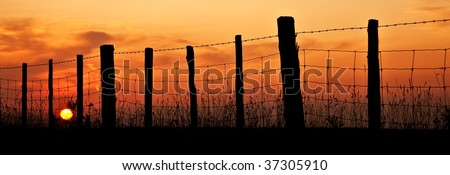 the sun setting on a barbwire fence - stock photo