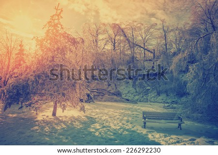 The sun shines brightly behind ice covered trees damaged from an ice storm and an icy bench in a park during the winter season.  Filtered for a retro, vintage look.  - stock photo