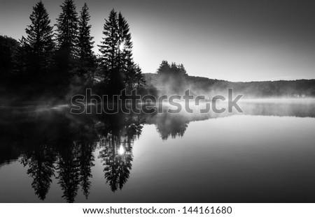 The sun shines through pine trees and fog at sunrise, at Spruce Knob Lake, Monongahela National Forest, West Virginia. - stock photo