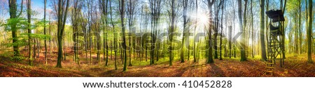 The sun shining brightly in a forest at springtime, wide panorama with rays of light and a hunting lookout - stock photo