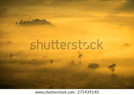 The sunrise landscape on the top of hill ( Phu Lang Ka), northern of Thailand.