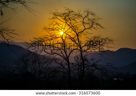 The sunset over the mountains, with trees silhouetted against the sky