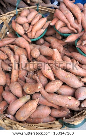 The sweet potato is a dicotyledonous plant that belongs to the family Convolvulaceae. Its large, starchy, sweet-tasting, tuberous roots are a root vegetable. - stock photo