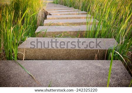 the terrazzo floor walk way in garden - stock photo