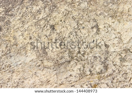 The texture of a flat stone limestone rocks in the background