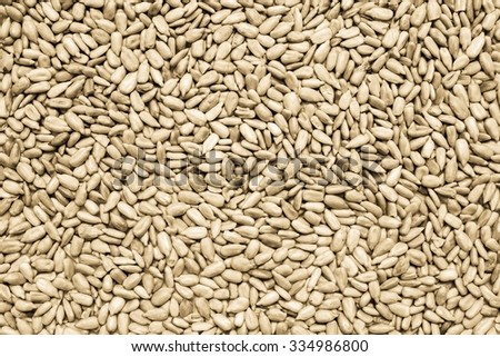 the textured background from the cleared sunflower seeds for abstract food wallpaper