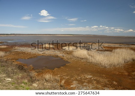 The tidal wetlands in the wildlife refuge in New Jersey - stock photo