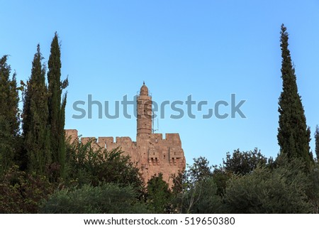 The Tower of King David Citadel in Jerusalem between two cypresses