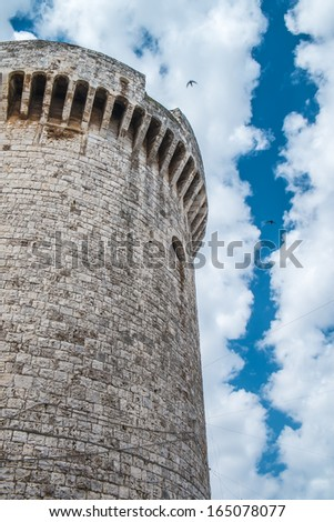 The tower of Luxembourg, in Conversano, south of Italy