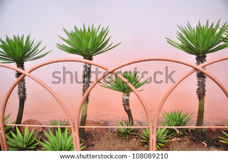 The trees along the border of orange hot spring - stock photo