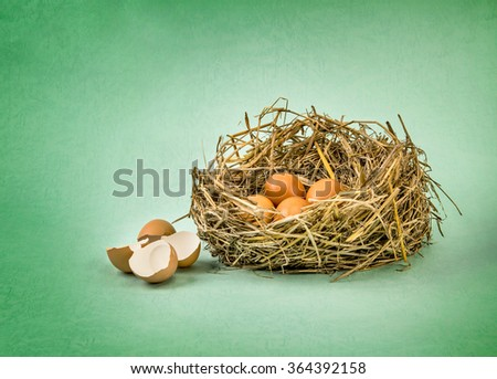 the twigs nest with brown chicken eggs with broken and empty shell egg on green grunge paper