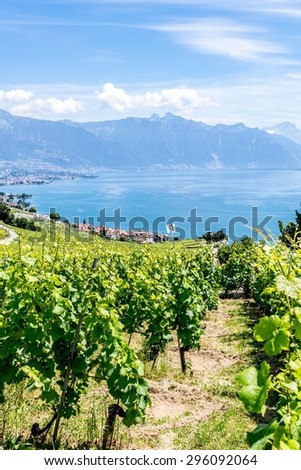 The UNESCO world heritage site of the Lavaux Vineyards near Montreux in Switzerland.