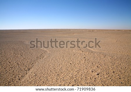The utterly barren western desert of Egypt.