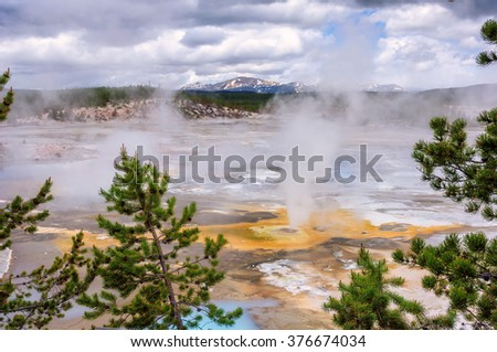 The valley of geysers in Yellowstone National Park, Wyoming