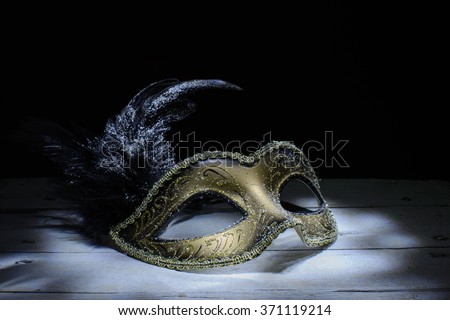The Venetian mask with feather . light brush - stock photo