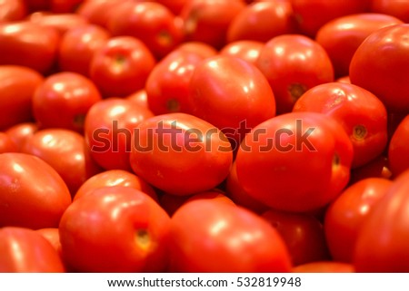 The very fresh red tomatoes heap on their own