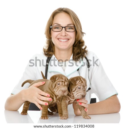 the veterinarian embraces two sharpei puppies dog. focus on a puppies. woman looking at camera. isolated on white background - stock photo