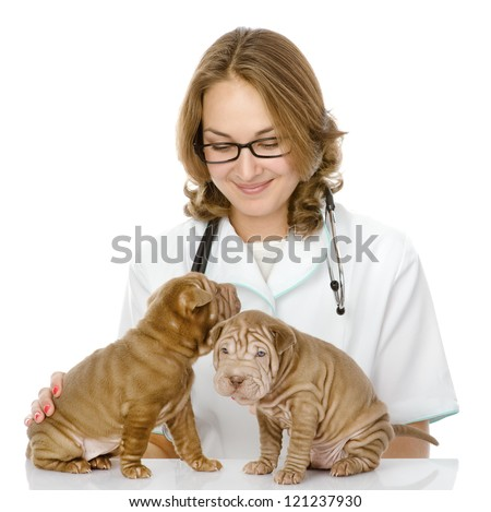 the veterinarian embraces two sharpei puppies dog. isolated on white background - stock photo