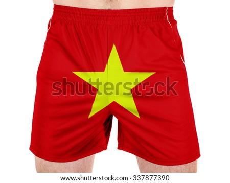 The Vietnamese flag  - stock photo