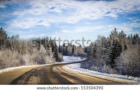 The view from the window of a car on the road and winter forest.