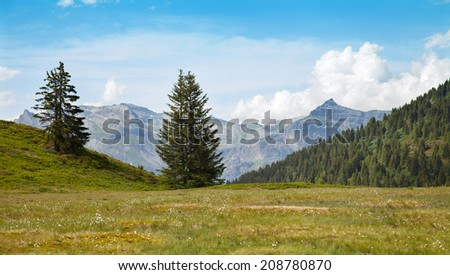 The view of the Alpine meadows  in high mountains near from Chamonix, France - stock photo