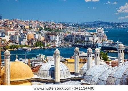 The view of the Bosphorus with the Bosphorus bridge and the shore of Beyoglu district from the courtyard of Suleymaniye Mosque throught the domes of third and fourth madrasas, Istanbul, Turkey