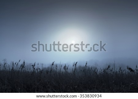 The view of the sun behind the fog and smog. Winter morning on the edge of the field and forest. - stock photo