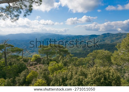 The view of Troodos mountains from top. With cedars on the foreground - stock photo