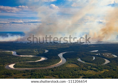 The View of wildfire of forest on height of the flight of the bird. - stock photo