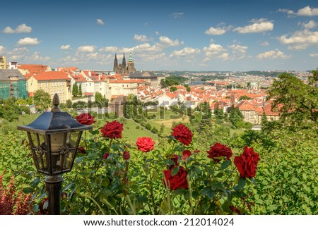 The View on the Prague's gothic Castle ,the city and red roses in foreground. - stock photo