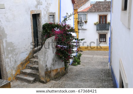the village of Obidos in Portugal