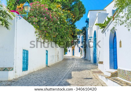 The village of Sidi Bou Said boasts the lush greenery in private gardens behind the high fences, Tunisia. - stock photo