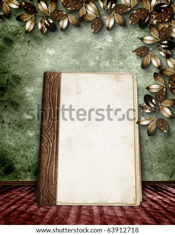 The vintage background with a old album. - stock photo