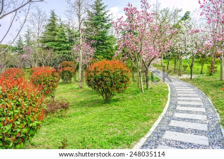 The walkway in a garden - stock photo