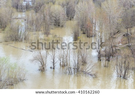 The water of the river flowed over the banks and flooded the trees in the spring. - stock photo