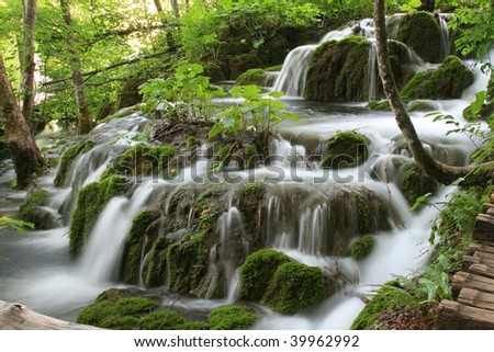 The waterfall flowing between mossy forest trees