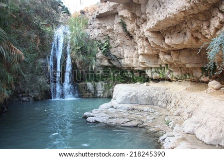 The Waterfall in national park Ein Gedi at the Dead Sea, Israel - stock photo