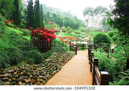 The way in Mae Fah Luang Garden,locate on Doi Tung,Thailand - stock photo