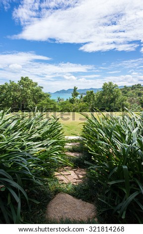 The way to nature. Lawn terraced. - stock photo