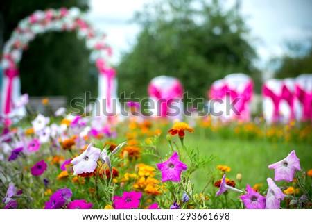 The wedding ceremony, wedding arch, flowers, garden,  flowers in focus - stock photo