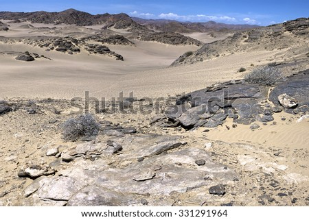 The white sand desert in the Skeleton Coast, Namibia. - stock photo