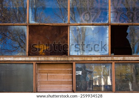 The windows of an abandoned factory reflecting back the autumn trees.