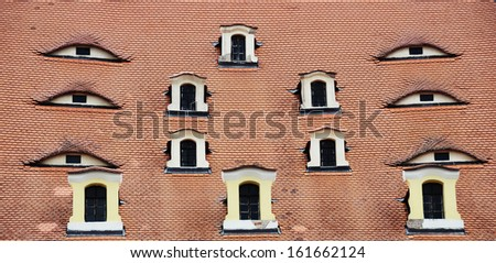 The windows of mansard rooms  - stock photo