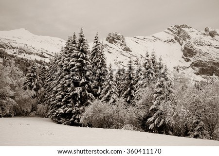The winter Alpine landscape